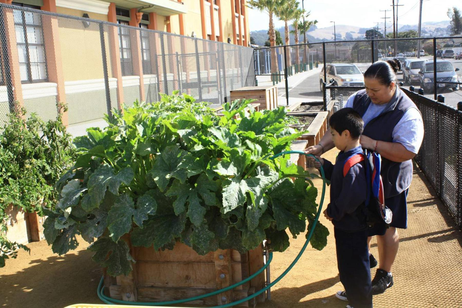 Sustainable Design Services - Ford Elementary School Garden 1